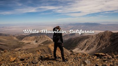 White Mountain California by Dylan Ozanich