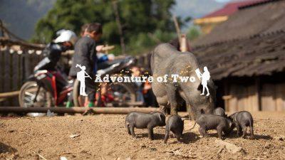 Sapa Vietnam by Adventure of Two